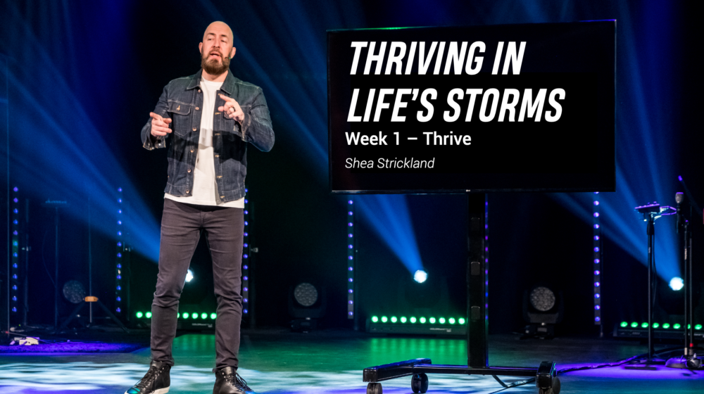 Thriving in Life\'s Storms Image