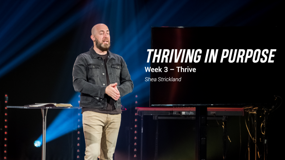 Thriving in Purpose Image