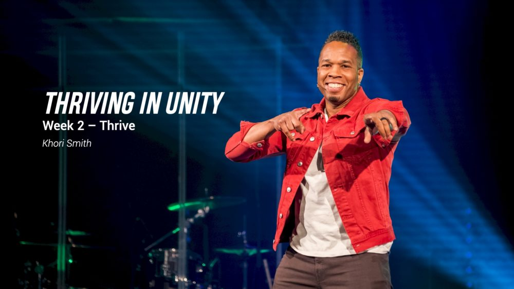 Thriving in Unity Image